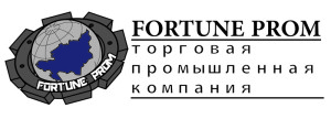 logoFortune2